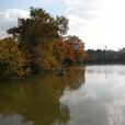 紅葉のため池の昼下がり