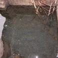 カバタの水