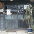 上原酒造玄関の梅