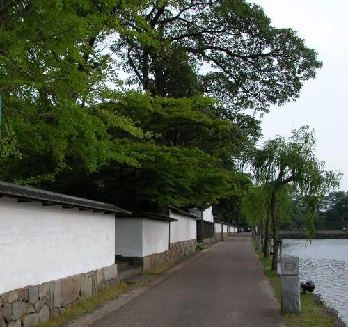 埋木舎の前の通り