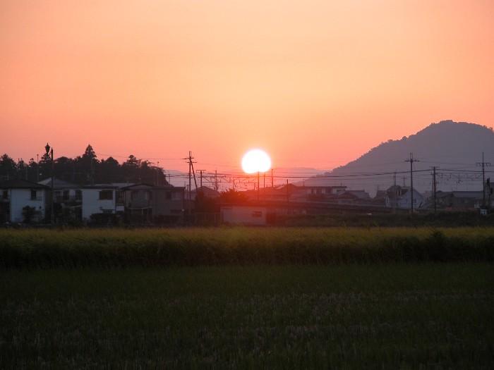2006103yuhi1