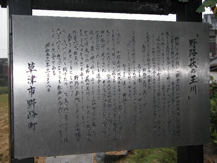 2006105tamagawa