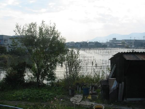 2006115katatanaiko
