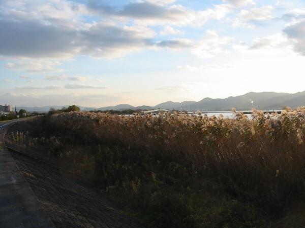 2006123biwako6