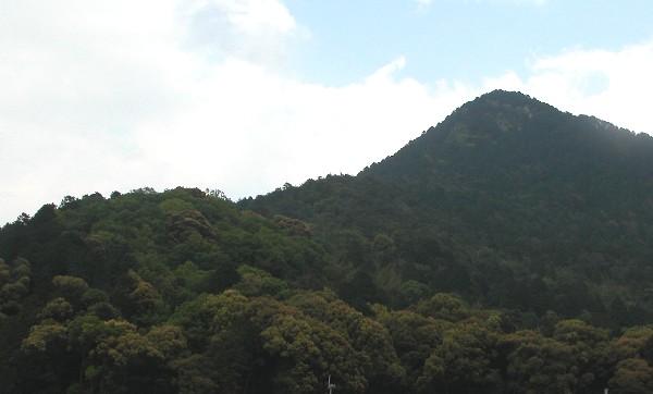 2006514mikamiyama_1