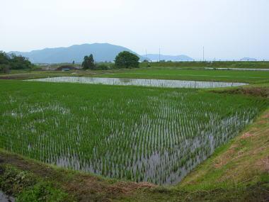 2008216ikemototanbo_2