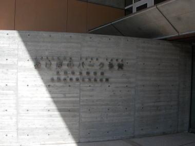 2008322taga2