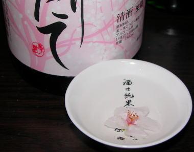 2008412hatuzakura