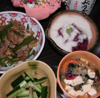 2008427yamakake