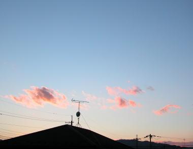 2009112yusora