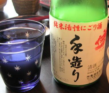 2009118s4shinkame
