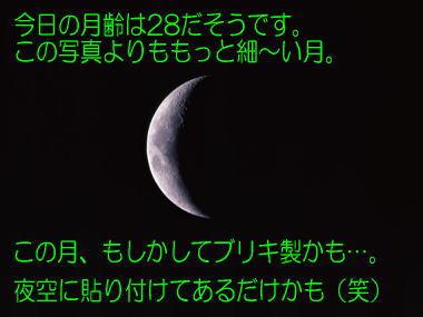 2009125tsuki