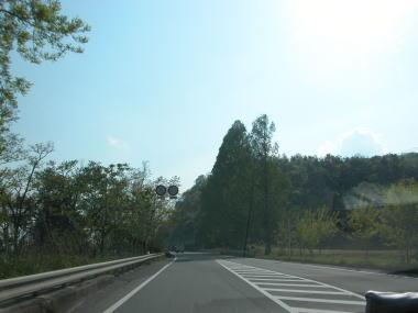 2009428ta8midori