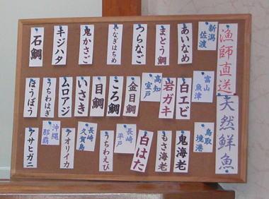 2009529hirose22