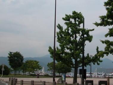 200964minato2