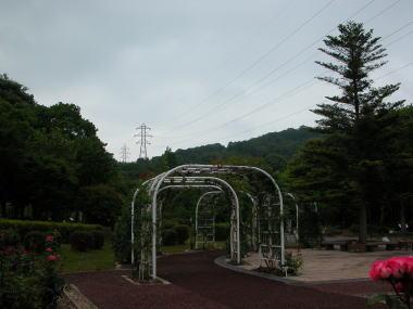 2009620ofkkb2
