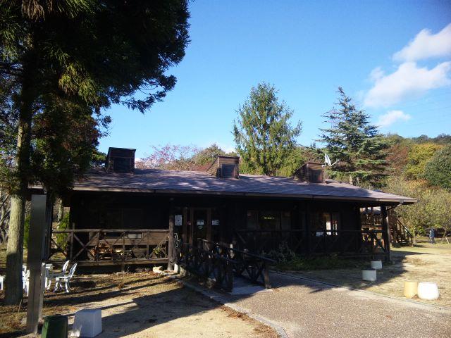 森のビィカフェ ハヤシライス
