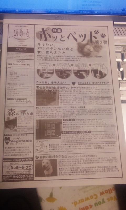 びぃめ〜る最新号出ました