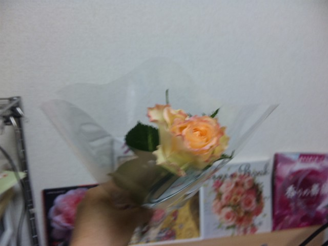 女性の日に一輪のバラ