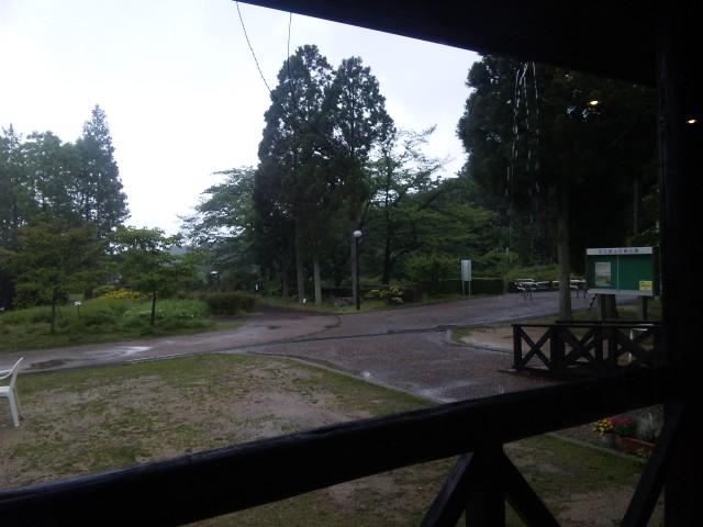 雨の森カフェ