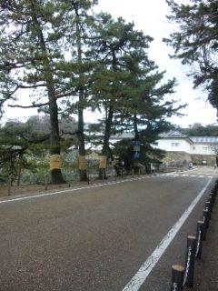 冬の彦根城