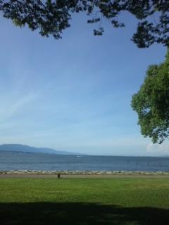 琵琶湖も夏