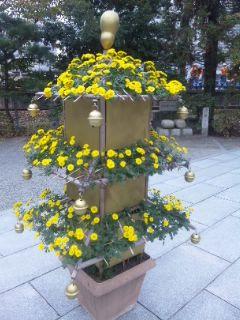 ドングリ、菊の塔仕立て