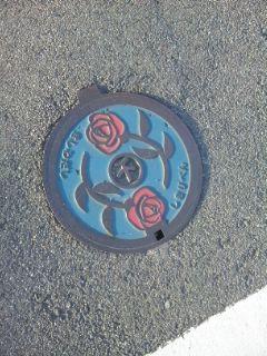バラとだんじりの日々、そしてカーネーションの岸和田2