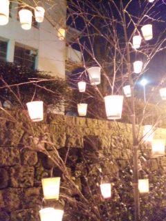 昨夜の岸和田城