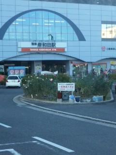 岸和田の秋色