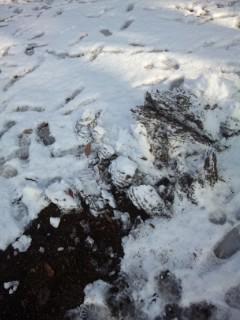 八日市の雪遊び
