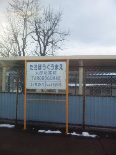 太郎坊宮と畑酒造