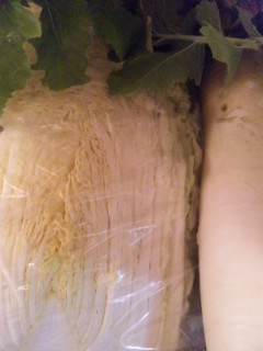 大根と白菜頂きました!