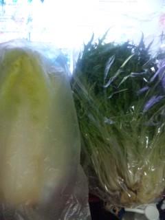 頂きものの白菜と水菜