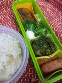 秋刀魚のピリ辛煮弁当