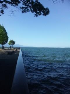 本日の青い琵琶湖