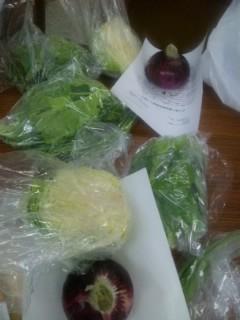 畑から野菜直送