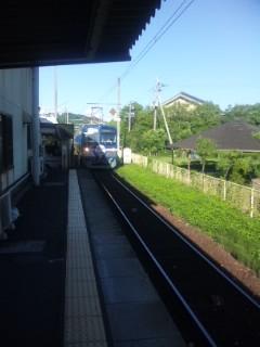 近江鉄道イルカ模様