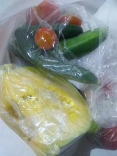 仕事先で頂いた野菜