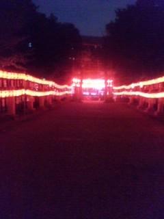 今年も赤い提灯