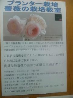 國枝さんのバラ講座