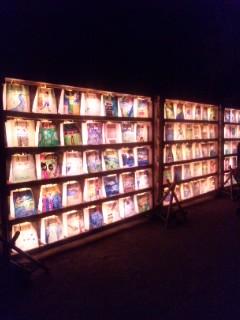 岡山城と後楽園ライトアップ