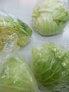野菜いただきました