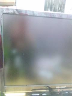 テレビに夢中