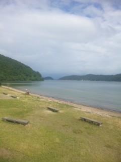 近江八幡の湖岸にキャッフィーいた
