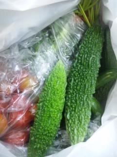 夏野菜(^∀^)ノ