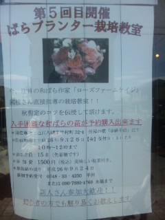国枝さんのバラ講座