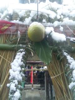 お雑煮、初雪、初詣