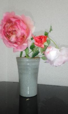 和バラ様咲いた