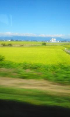 夏の終わりの田園風景